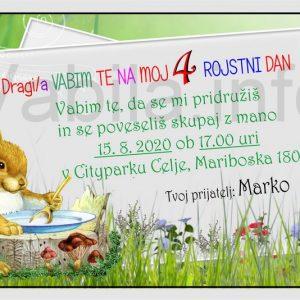 Otroška vabila za 4 rojstni dan – komplet 10 otroških vabil + kuverte - 412