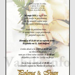 Vabila za poroko – komplet 10 Poročnih vabil + kuverte - 489