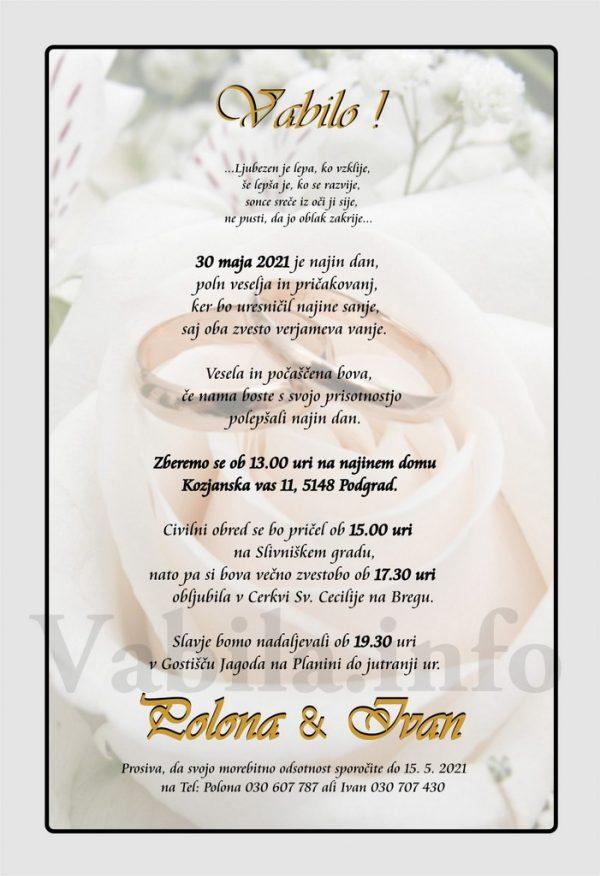 Vabila za poroko – komplet 10 Poročnih vabil + kuverte - 491