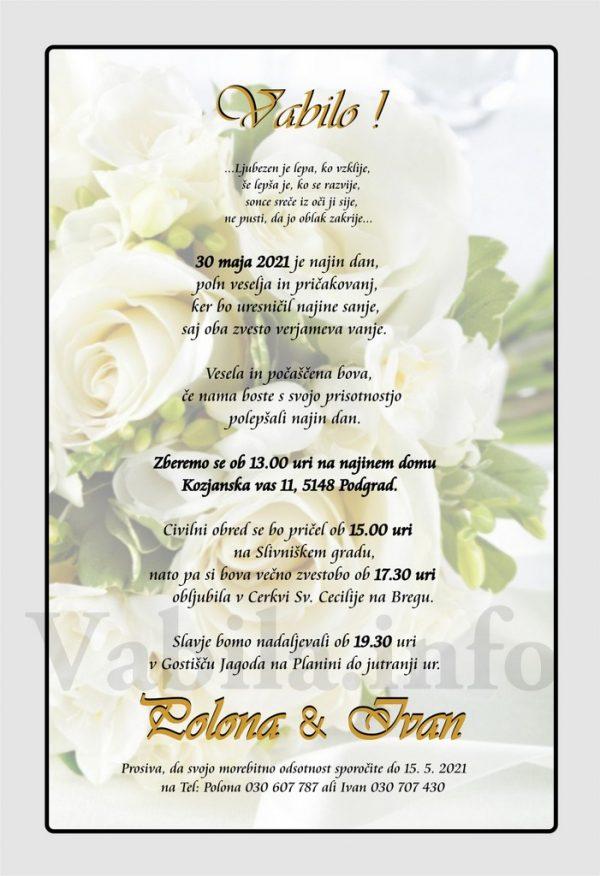 Vabila za poroko – komplet 10 Poročnih vabil + kuverte - 494