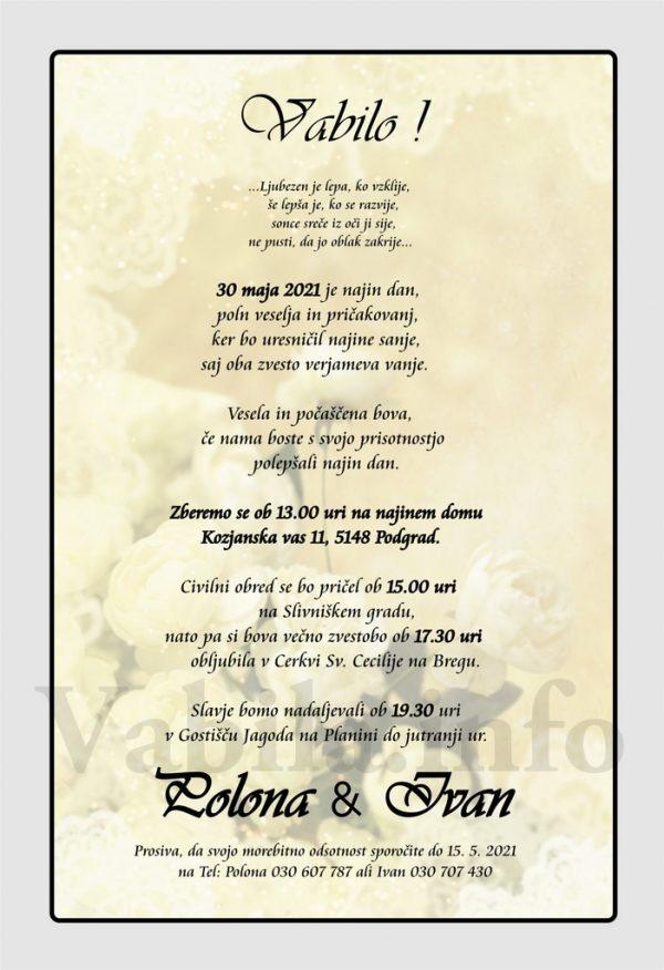 Vabila za poroko – komplet 10 Poročnih vabil + kuverte - 501
